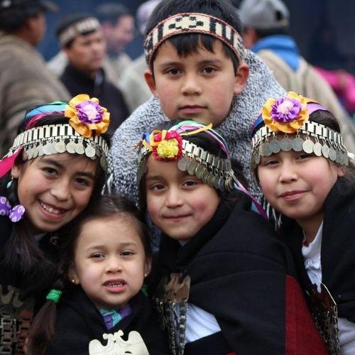 Taller Básico Mapuchezugun Lawen Mapu